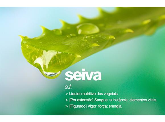 seiva